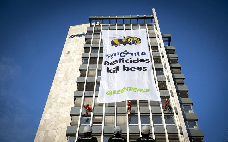 Action At The Syngenta HQ, Basel