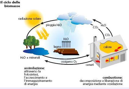 Le centrali a biomasse. Un danno o un vantaggio?