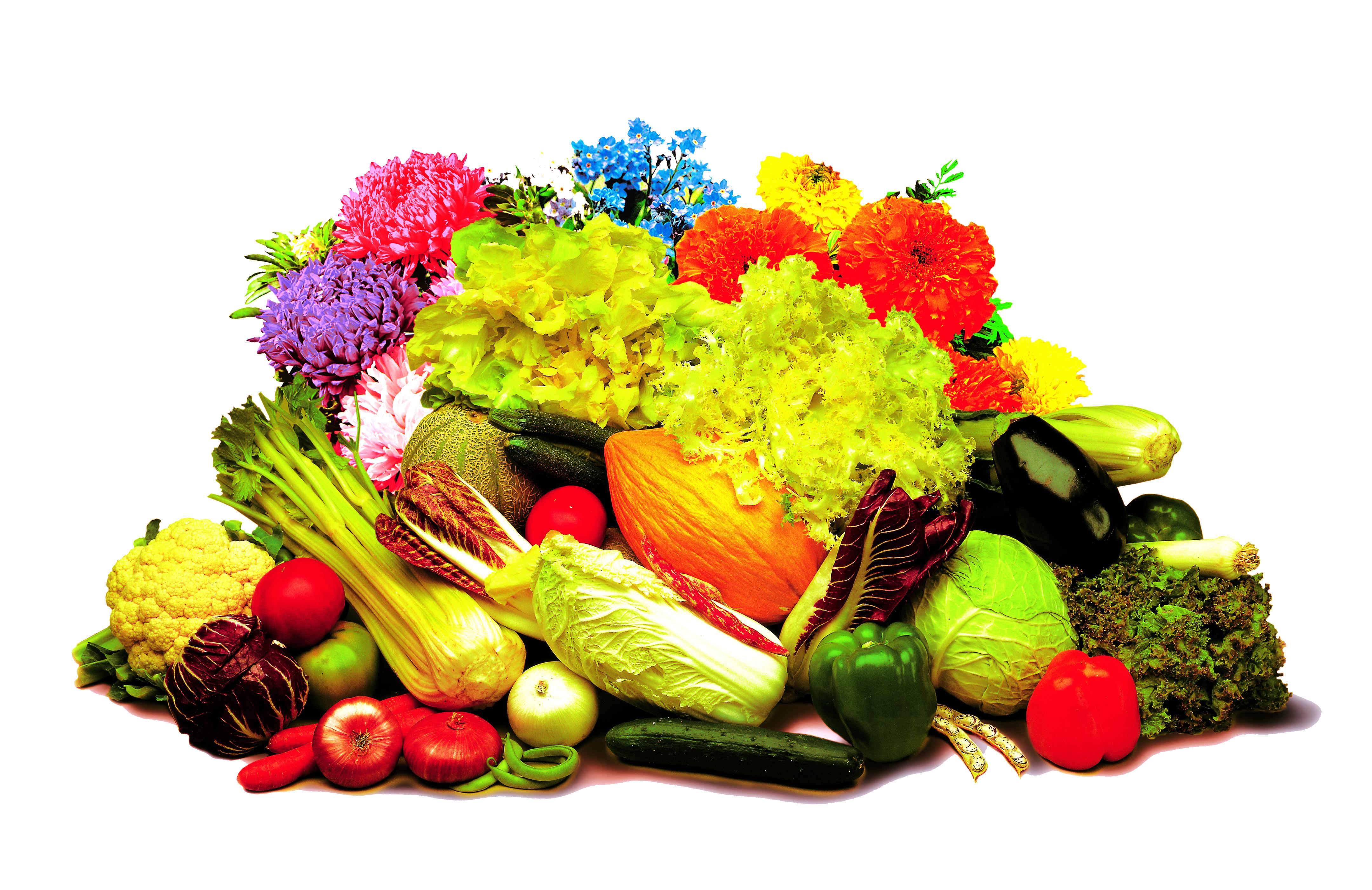 Festa dell'orto, a Brescia il 30 marzo