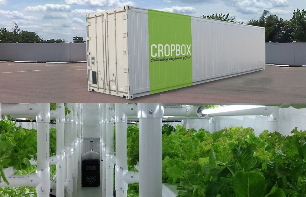 Agricoltura 3.0: la new economy del cibo è già iniziata