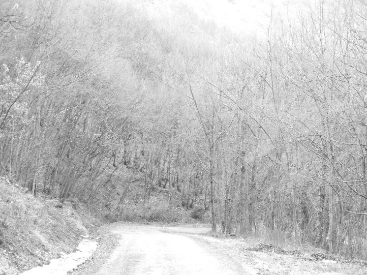 La strada ancora asfaltata che sale dalla provinciale a Graiana e poi a Roccaferrara