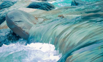Adattarsi per sopravvivere:  l'acqua evita le alture e riempie le cavità
