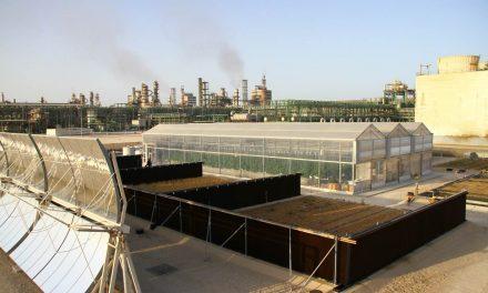 L'agricoltura del futuro. Energia solare e acqua di mare: un orto nel deserto