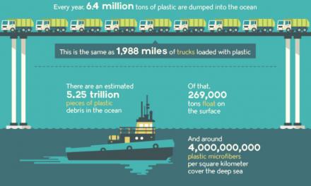 Un oceano di plastica: problemi e soluzioni in un'infografica